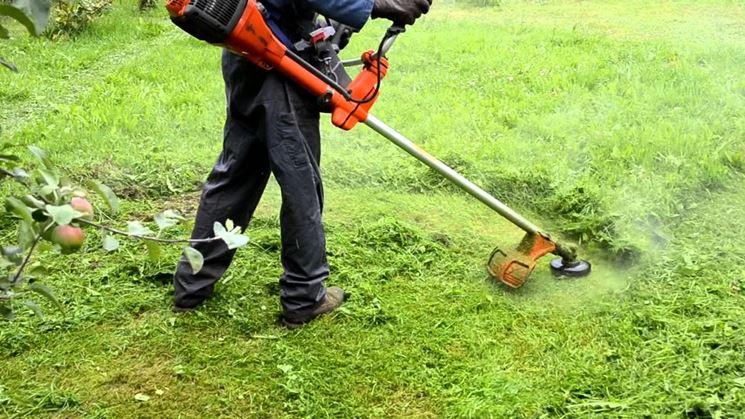 PRESCRIZIONI ANTINCENDIO 2020 - Pulizia di terreni cortili e giardini